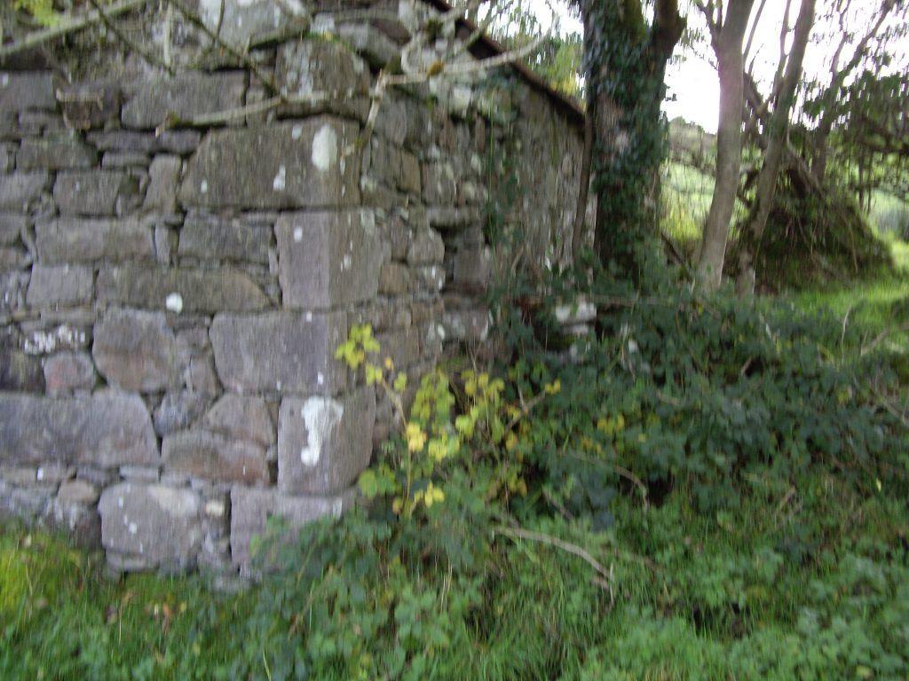 Stonepark, Sligo, Ireland, RUINS4, SMM©2007